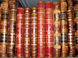 Image of shelved leather bound books