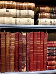 Image of two shelves of stacked books